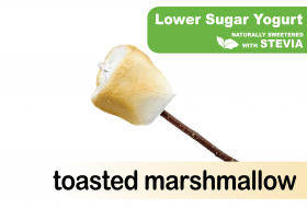 Lower Sugar Stevia Toasted Marshmallow